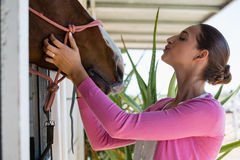Young woman touching horse Royalty Free Stock Image