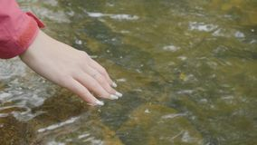 Young woman touching the water of the river in the forest. Young tourist touches the river hand Royalty Free Stock Photo
