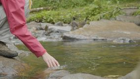 Young woman touching the water of the river in the forest. Young tourist touches the river hand royalty free stock image