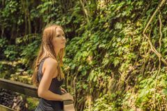 Young woman tourist explores the Monkey Forest in Ubud, Bali, Indonesia royalty free stock image