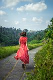 Young woman tourist in a lon red dress running on the rainforest trail. Bali island. Indonesia stock images