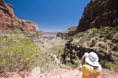 Young woman tourist photographer in grand canyon Stock Photos