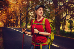 Young woman tourist. Walking with sticks and backpack on road. Warm sunset colors Royalty Free Stock Photography