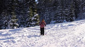 A young woman tourist walks through the snow in a winter forest in the mountains. A young woman hiker walks through the snow in a winter forest in the mountains stock video