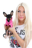 Young woman with toy-terrier over white Royalty Free Stock Photos