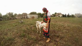 A young woman in a traditional Ukrainian traditional dress with goats in a field near the village. Collection, a girl in a traditional Ukrainian folk costume in stock footage
