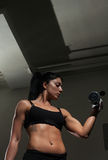 Young woman training in the gym Royalty Free Stock Photography