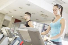 Young woman training in the gym Stock Photos