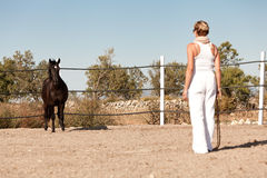 Young woman training horse outside in summer Stock Images