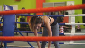 Young woman training pre-match warm-up in the boxing ring. stock video