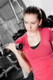 Young woman training. A pretty young woman training in a fitness center Royalty Free Stock Image