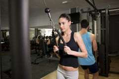 Young woman training triceps Royalty Free Stock Photos