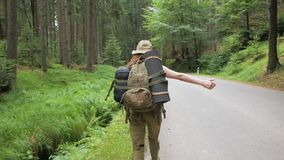 Female traveler on the road. Young woman traveler hitch-hiker alone in the forest road with backpack stock video