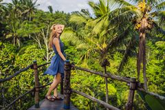 Young woman traveler on view point in the background of a jungle, Bali, Indonesia.  stock photos