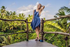 Young woman traveler on view point in the background of a jungle, Bali, Indonesia.  stock photography