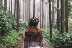 Young woman traveler walking Royalty Free Stock Photos