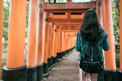 Young woman traveler walking in torii royalty free stock images