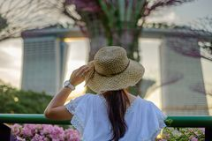 Young Woman traveling with white dress and hat, Asian traveler looking to supertree at gardens by the bay in Singapore. landmark. And popular for tourist stock images