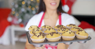 Young woman with a tray of Christmas cupcakes Stock Images