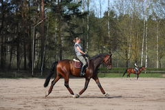 Young woman trotting on the horse Royalty Free Stock Photo