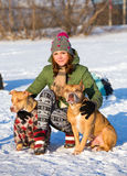 Young woman with two American Pit Bull Terrier winter Stock Image