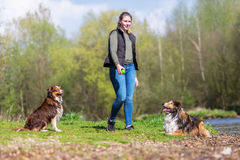Young woman with two dogs at a river. Young woman with an Australian Shepherd and a Collie-Mix at a river Stock Photos