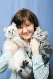 Young woman with two kittens Stock Photos