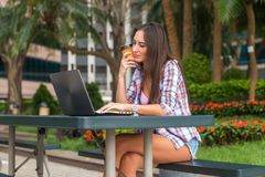 Young woman typing on her laptop working and drinking coffee in the park.  Royalty Free Stock Images