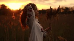 Young woman in Ukrainian national embroidered shirt walks through meadow at sunset. Young woman in Ukrainian traditional national embroidered shirt walks stock video footage