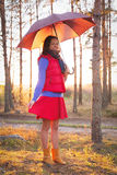 Young woman with umbrella in sunset lights in forest. Young woman with umbrella in sunset lights in the forest royalty free stock image