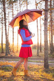 Young woman with umbrella in sunset lights in forest. Young woman with umbrella in sunset lights in the forest stock image
