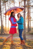 Young woman with umbrella in sunset lights in forest. Young women with umbrella in sunset lights in the forest stock photos