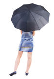 Young woman under an umbrella. Stock Photography