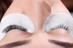 Young woman undergoing eyelash extensions procedure,. Closeup royalty free stock photography