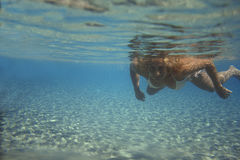 Young woman underwater. Royalty Free Stock Images