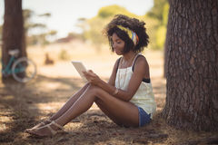 Young woman using digital tablet while sitting by tree Royalty Free Stock Photo