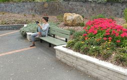 Young woman using her tablet. Girl sitting in a park taking photos in Napier, New Zealand Stock Photography