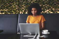 Young woman using laptop in cafe stock images