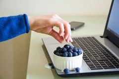 Young woman using laptop computer at home. And eating blueberry Royalty Free Stock Images
