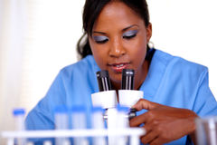 Young woman using a microscope Stock Image
