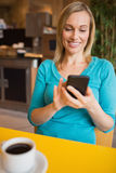 Young woman using mobile phone in restaurant Stock Image