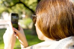 Young woman using mobile phone to take photo outdoors at the park Royalty Free Stock Photography