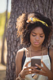 Young woman using smart phone Stock Image