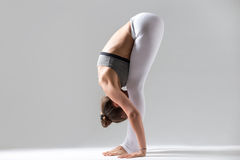 Young woman in uttanasana pose, grey studio background. Young attractive woman practicing yoga, standing forward bend, head to knees exercise, uttanasana pose Stock Photo