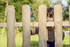 Young woman varnishing a fence with a brush Stock Photo