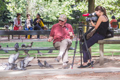 Young woman videographer films older man feeding pigeons in Luxe Stock Photography