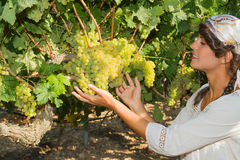 Young woman, vine grower, in the vineyard. Stock Photo