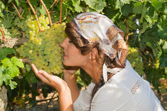 Young woman, vine grower, in the vineyard. Royalty Free Stock Photo
