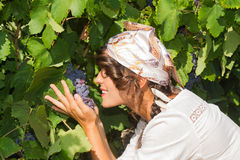 Young woman, vine grower, in the vineyard. Royalty Free Stock Images