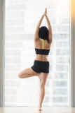 Young woman in Vrksasana pose against floor window, rear view. Young attractive woman practicing yoga, standing in Vrksasana exercise, Tree pose, working out Stock Photography